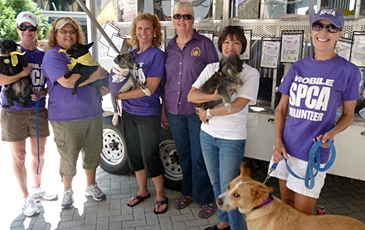 Mobile Volunteers with Dogs