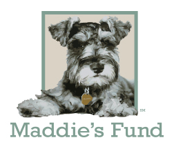 http://www.maddiesfund.org/assets/documents/About%20Us/Logos/Logo/maddies_color_3-5in_72dpi.jpg