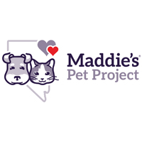 Maddie's Pet Project