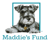 Maddie's Logo Square Layout