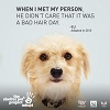 Meet the New Shelter Pet Project PSAs!